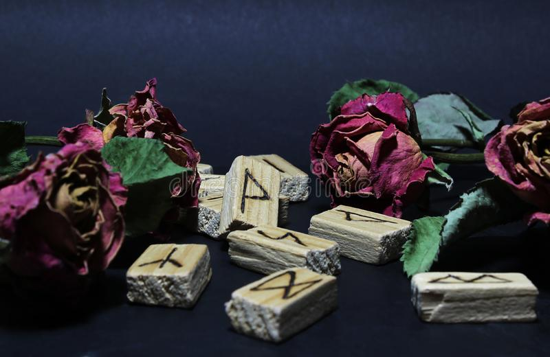 Ansicht von hölzernen Runen um trockene Blumen von roten Rosen, gegen einen dunklen Hintergrund Bewirken Sie seitlichen 50mm Nikk lizenzfreie stockbilder