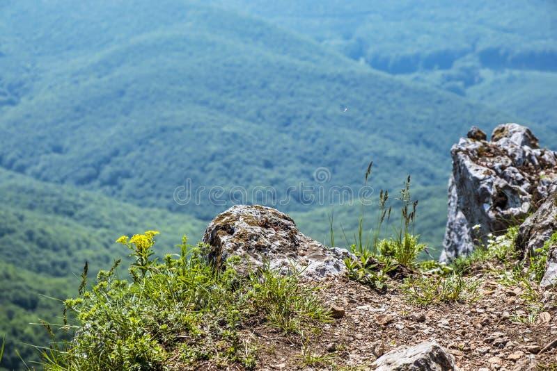 Ansicht von Hügel Vapenna - Rostun, wenige Karpaten, Slowakei lizenzfreie stockfotos