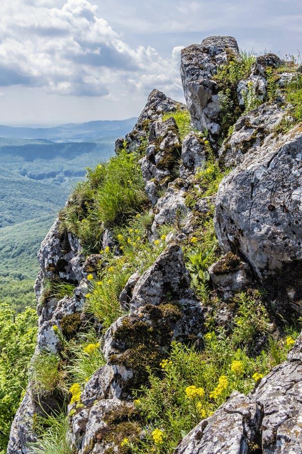 Ansicht von Hügel Vapenna - Rostun, wenige Karpaten, Slowakei lizenzfreie stockfotografie