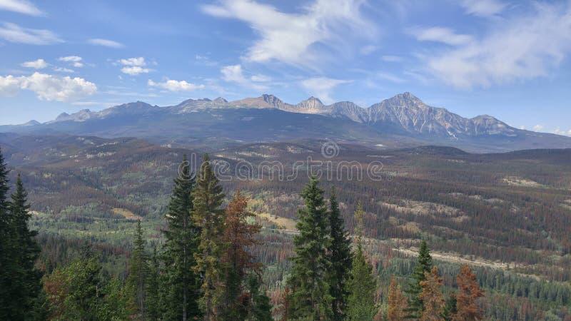Ansicht von Jasper Mountains stockfotografie