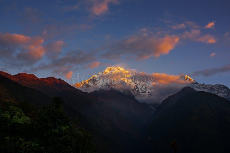 Ansicht von Mt Annapurna III bei Sonnenaufgang von Chomrong, Nepal stockbild