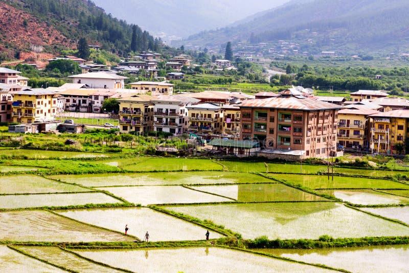 Ansicht von Paro-Tal mit grünem Reisfeld, Paro, Bhutan lizenzfreie stockfotos