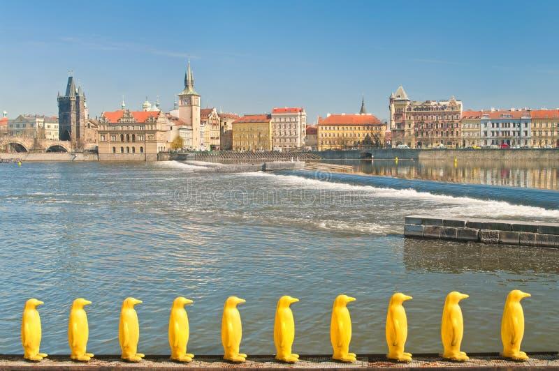 Ansicht von Prag-Flussufer mit gelben Pinguinen am Vordergrund lizenzfreies stockbild