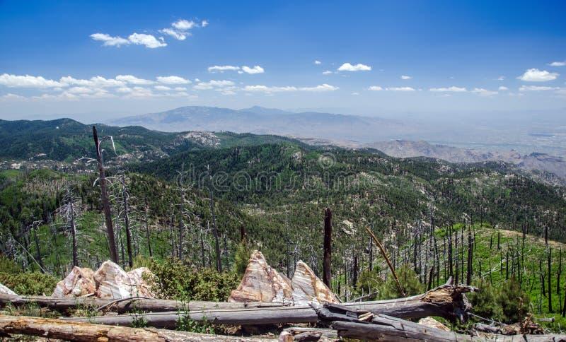 Ansicht von Santa Catalina Mountains auf vom Berg Lemmon in Tucson, Arizona stockbilder