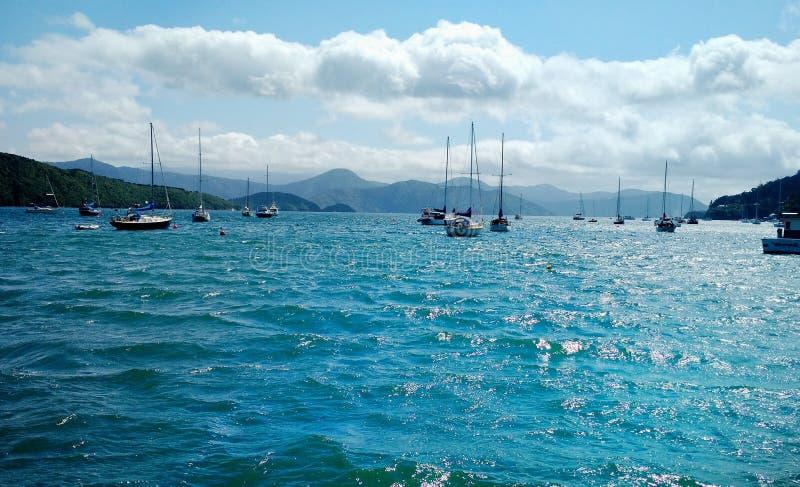 Ansicht von Segelbooten an Waikawa-Bucht Picton, Neuseeland stockbild