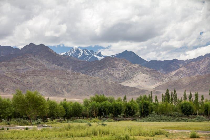 Ansicht von Stok Kangri vom Fluss Indus-Floodplain, Thiksay lizenzfreie stockfotos