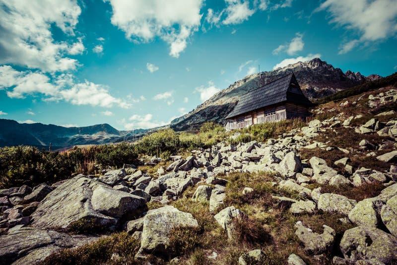 Ansicht von Tatra-Bergen vom Wanderweg polen europa stockbild