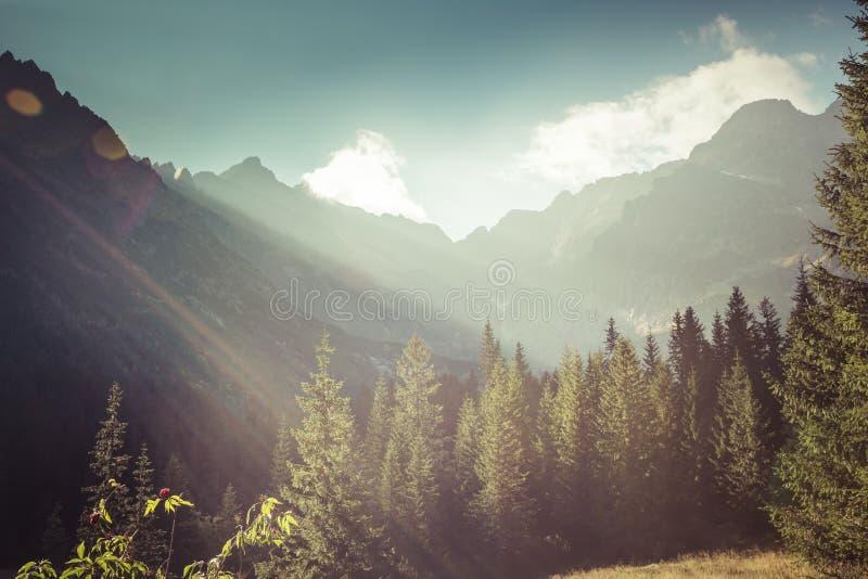 Ansicht von Tatra-Bergen vom Wanderweg polen europa stockfoto