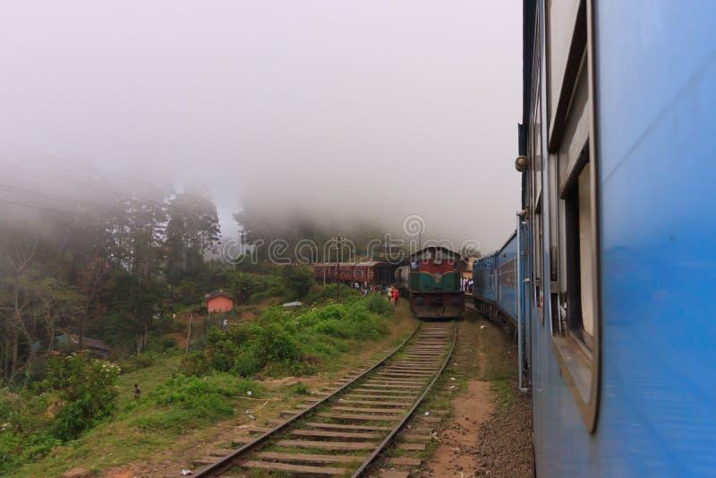 Ansicht von Teeplantagen vom Zug von Kandy zu Ella stockfotografie