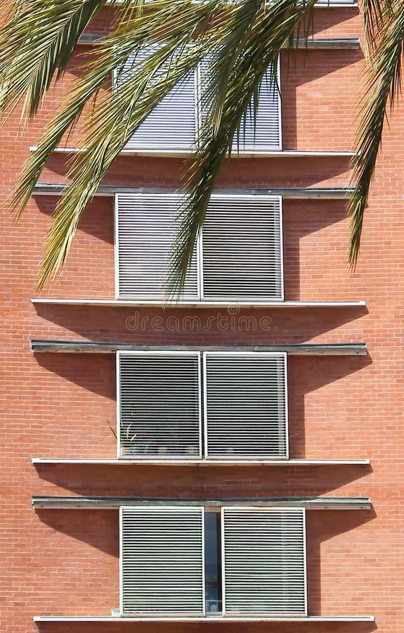 Ansicht von vier Fenstern mit Jalousie auf einem Ziegelsteinrot-Wandhintergrund mit Palme Le lizenzfreie stockfotografie