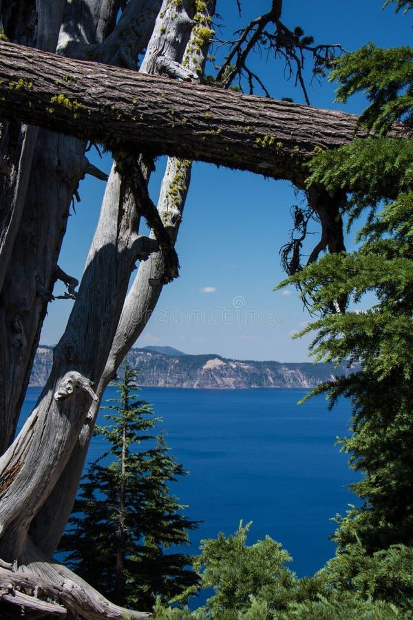 Ansicht von Zauberer-Insel auf Crater See-Nationalpark in Oregon lizenzfreies stockfoto