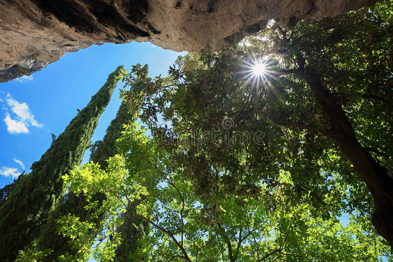 Ansicht zu überhängendem Felsengesicht und -baum krönt mit hellem sunshi stockbilder