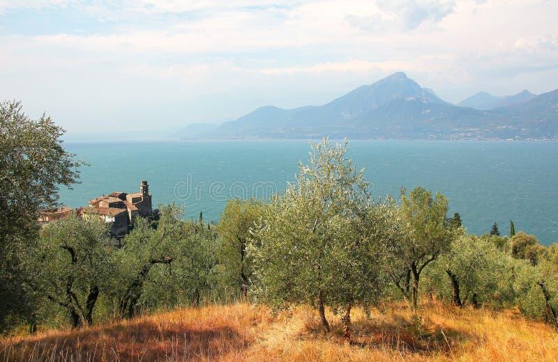 Ansicht zu Dorf pai, zum Olivenhain und zu garda See, Italien lizenzfreie stockfotografie