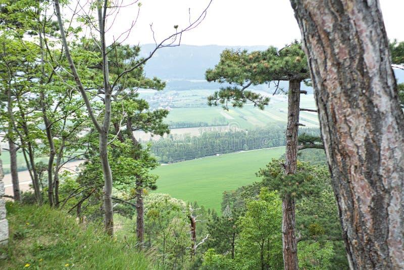 Ansicht zu einem Dorf zwischen Bäumen vom Berg stockfoto