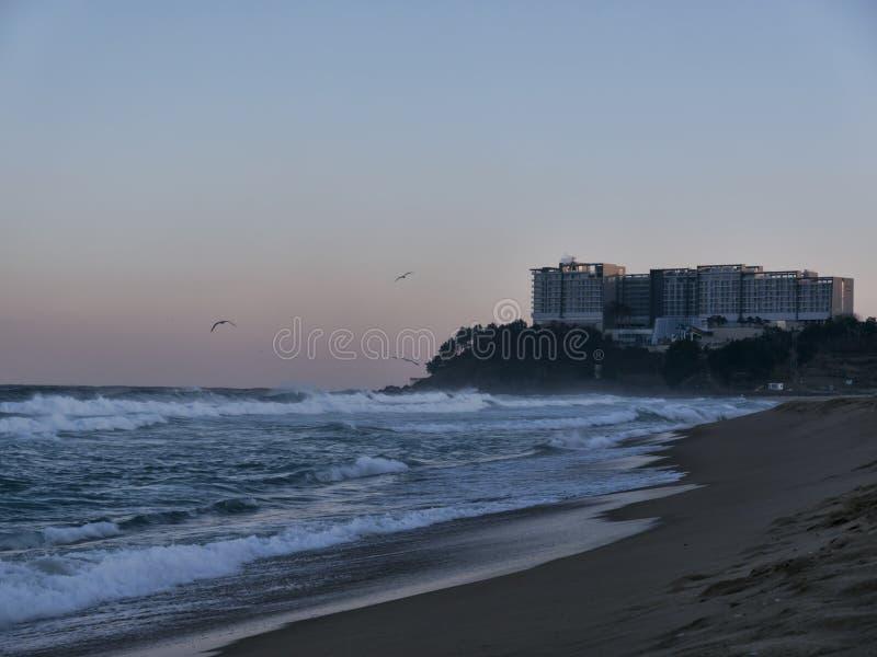 Ansicht zu Lotte Hotel von Sokcho-Strand lizenzfreie stockfotografie