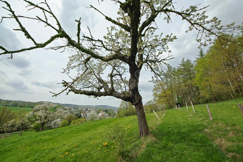 Ansicht zu Neusalza Spremberg lizenzfreie stockbilder