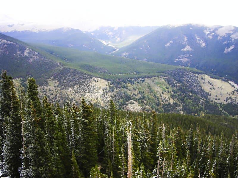 Ansicht zum Holz in den felsigen Bergen stockfotos
