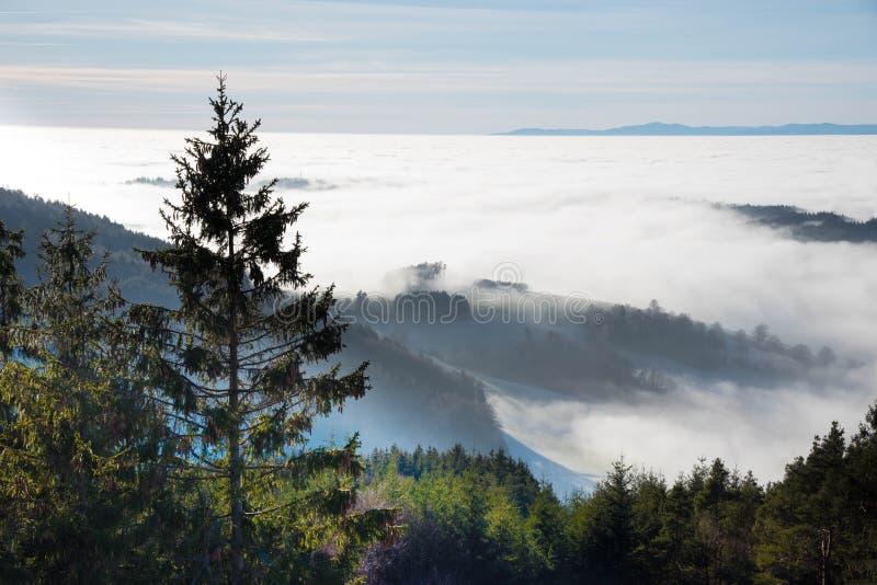 Ansicht zum nebeligen Rhein vally vom schwarzen Wald lizenzfreie stockbilder