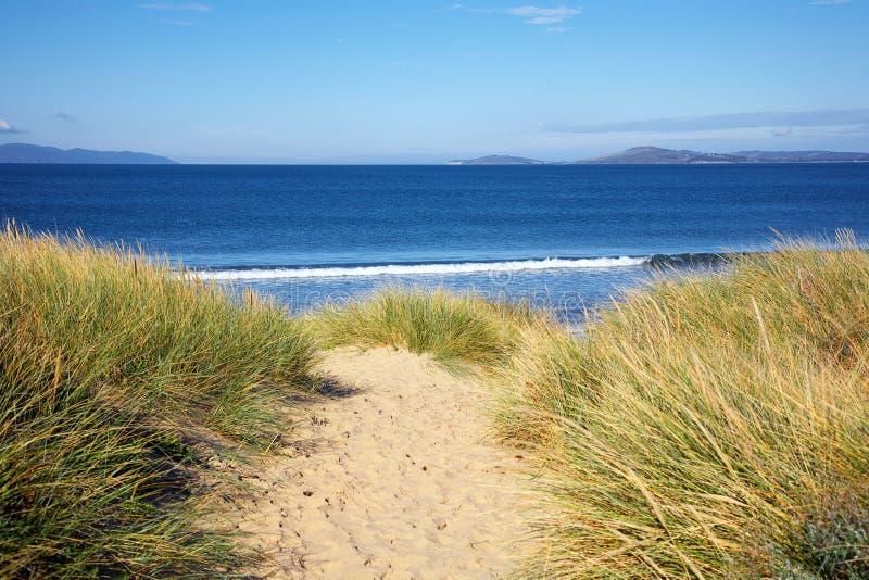 Ansicht zum Strand, Tasmanien. lizenzfreie stockfotografie