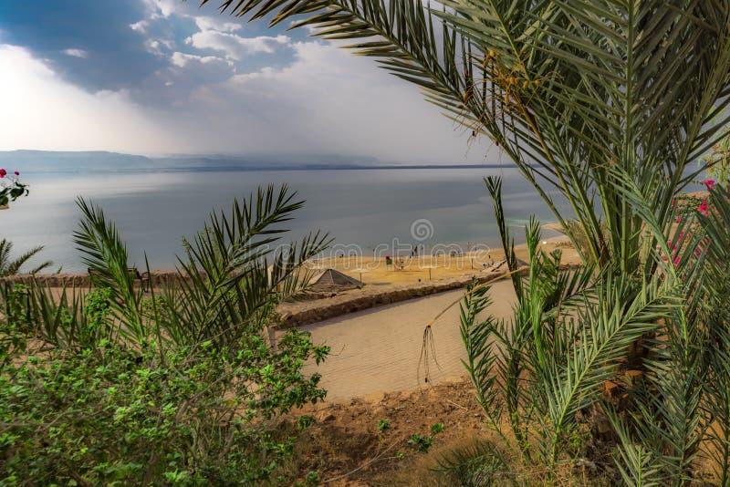 Ansicht zwischen die Palmen und die Büsche, auf dem Strand und dem Toten Meer von der Seite von Jordan The-Himmel ist dunkel und  stockfotos