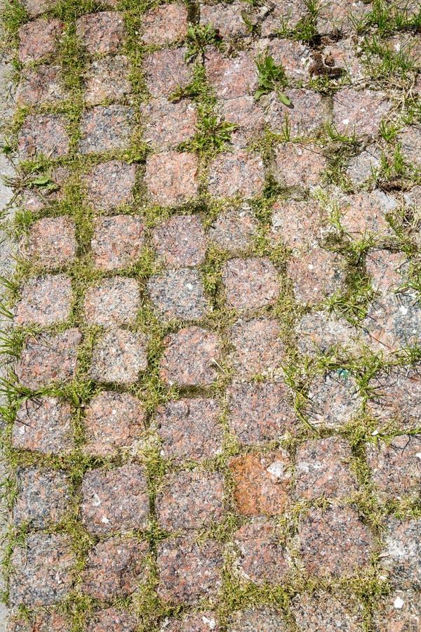 Ansichtbahn von quadratischen Granitblöcken mit gekeimtem grünem Gras stockfotografie
