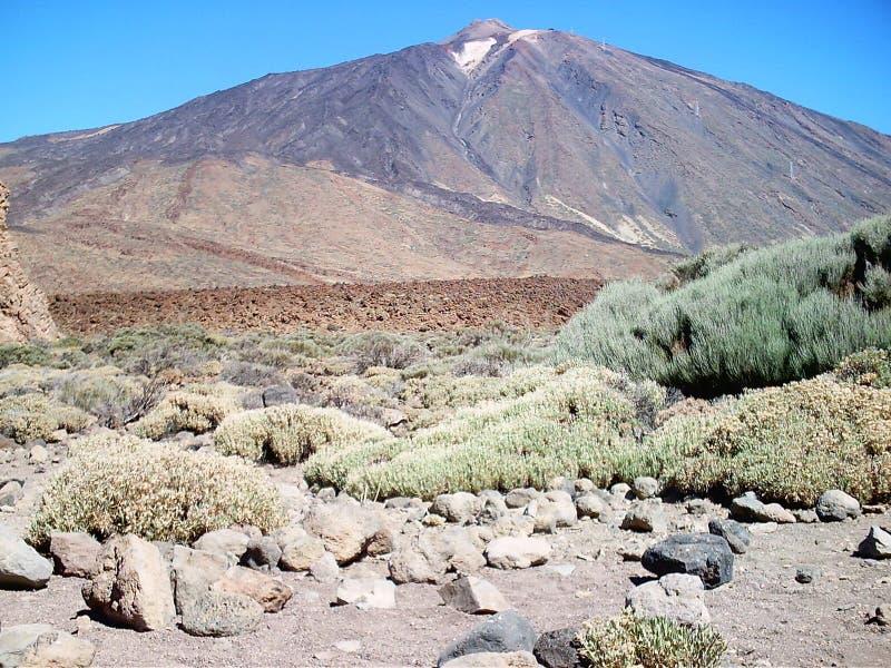 Ansichtsüdgesicht von Vulkan teide Teneriffa stockbild