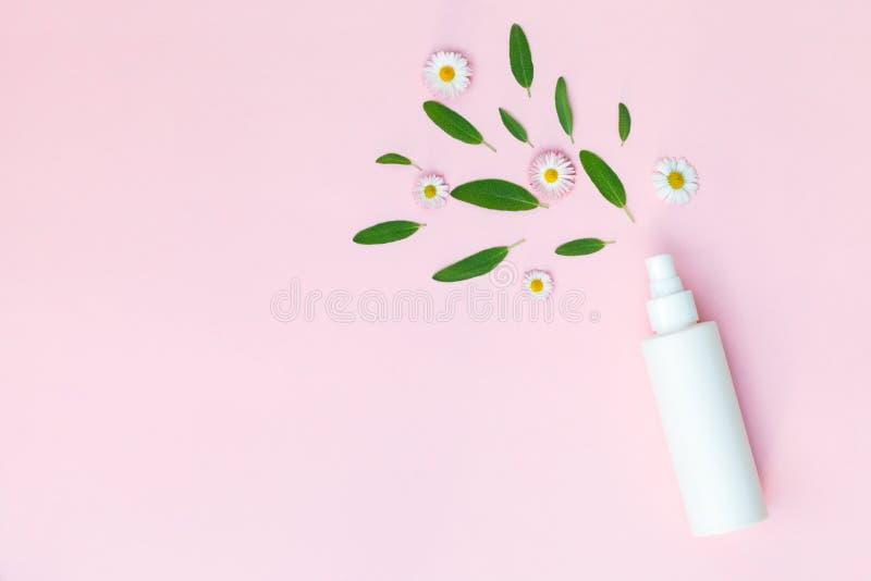 Ansikts- fuktafärgpulver, hårsprej, blom- kroppdeodorant med nya kamomilltusenskönablommor som isoleras på pastellfärgad rosa bak arkivbild