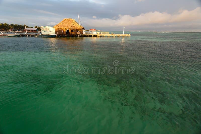 Ansluta i gråambra Caye av kusten av Belize royaltyfri bild