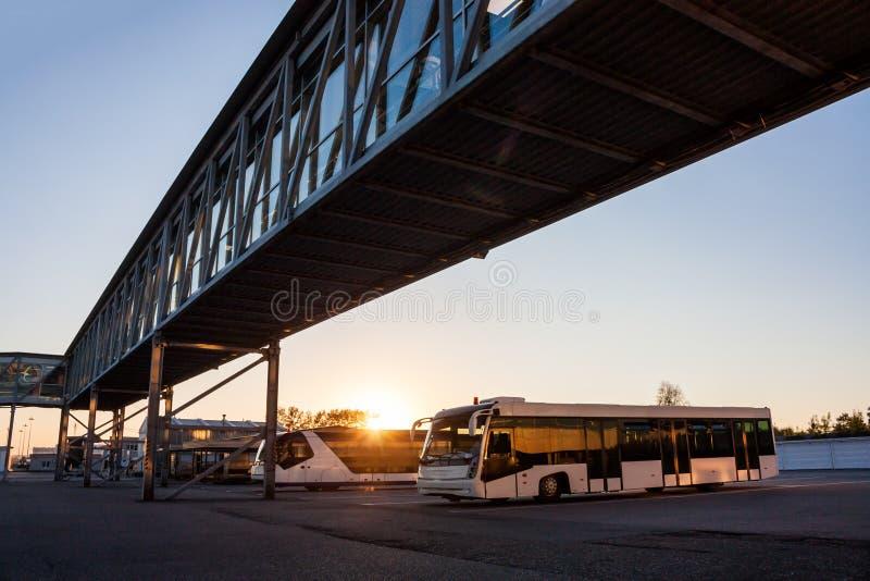 Anslutningsbussar på parkeringsplatsen av flygplatsen nära det jetway i strålarna av inställningssolen royaltyfri bild