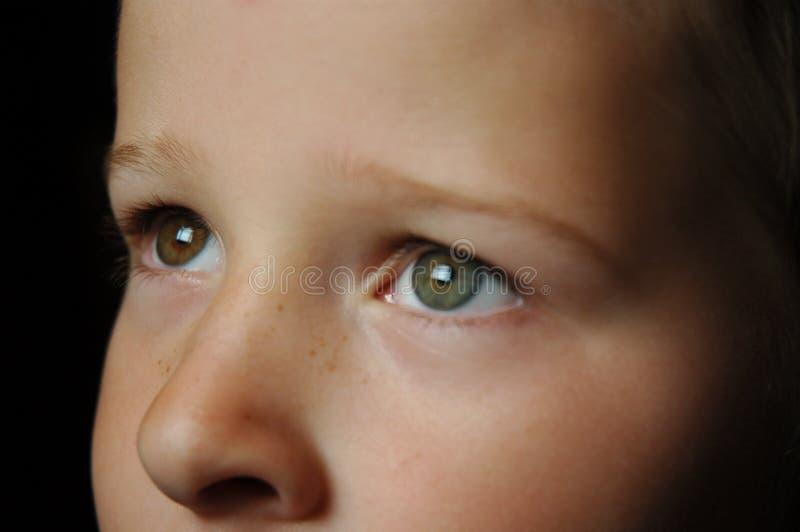 Download Anstarren der Augen stockfoto. Bild von schätzchen, gesicht - 46566