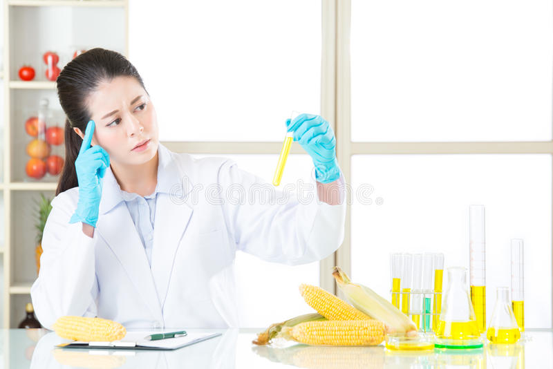 This is the answer for gmo food stock images