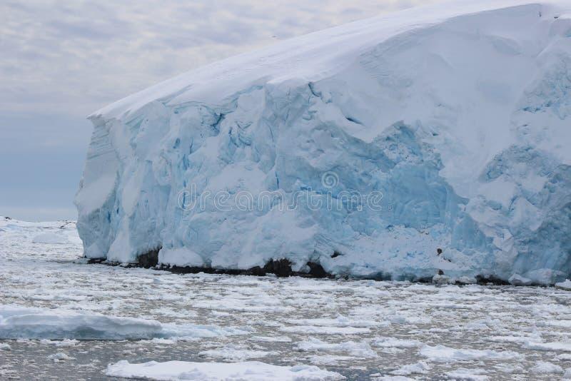 A Antártica - paisagem fotografia de stock