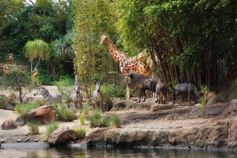 Antílope de la cebra de la jirafa de la travesía de la selva de Disney fotos de archivo