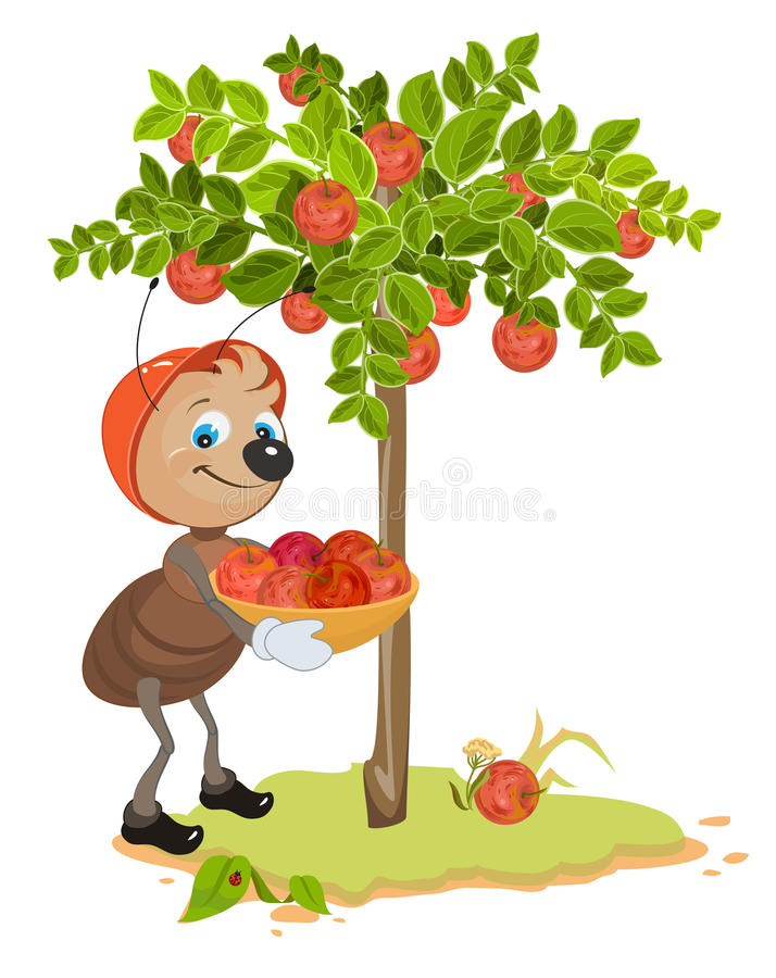 Ant Gardener gather apples. Apple tree and red ripe apples. Orchard vector illustration
