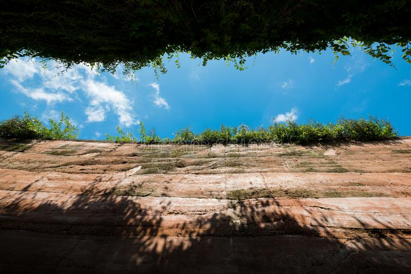 Ant`s eyes view from underground,cross section of green grass an stock photography