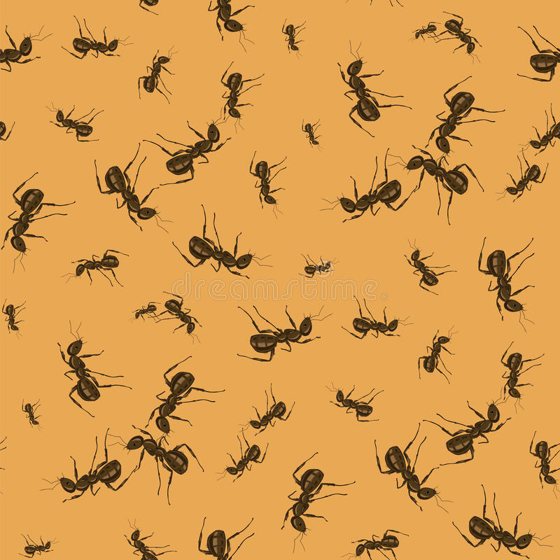 Ant Seamless Pattern royalty illustrazione gratis