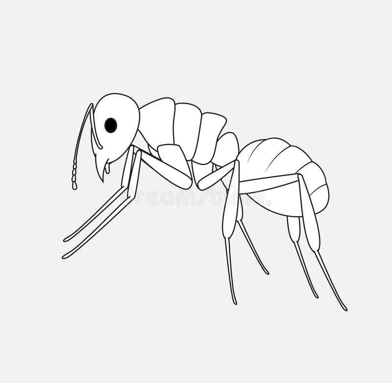 Ant Sketching. Creepy Ant Insect Sketching Vector Illustration vector illustration