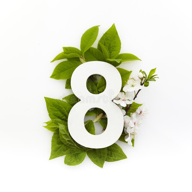Antal åtta med gröna blad Minimalt sommarkoncept Plattlägg arkivfoto