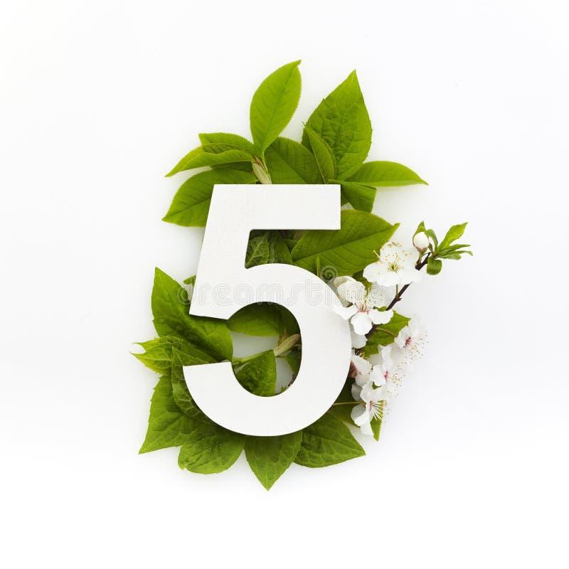 Antal fem med gröna blad Minimalt sommarkoncept Plattlägg fotografering för bildbyråer