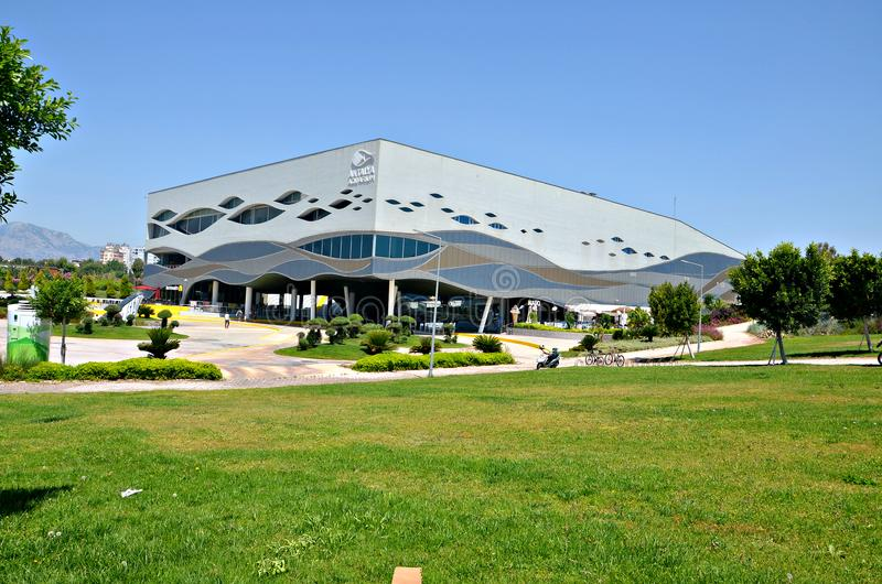 Antalya akvarium Det största tunnelakvariet för world's! royaltyfria foton