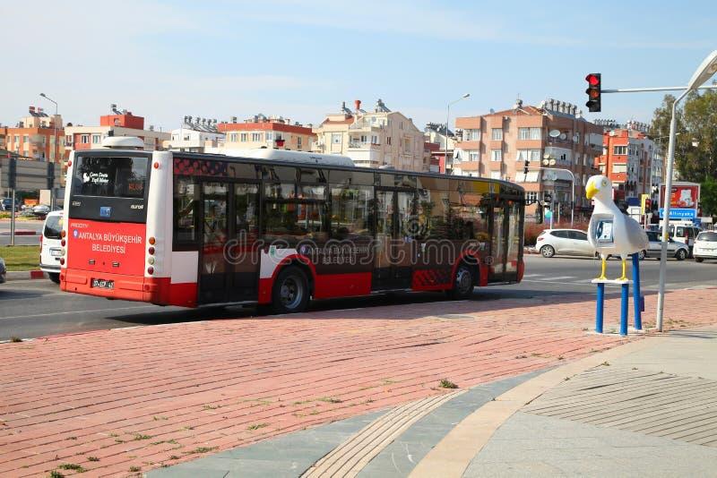 ANTALYA TURKIET - JUNI 7, 2015: Stadsbuss som framme står av en trafikljus på tvärgatorna i Antalya, Turkiet arkivfoto