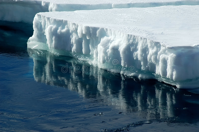 Antarctic ice floe. With reflection stock image