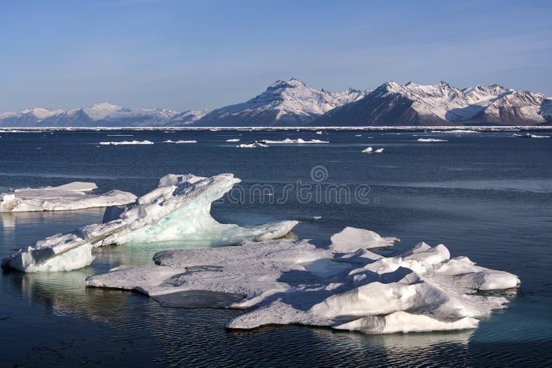 Antarctic Peninsula - Antarctica stock photography