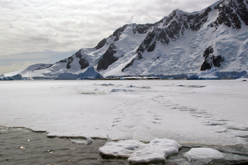 Antarctic sea ice. Sea ice infront of Antarctic mountains with seal tracks across the ice royalty free stock photos
