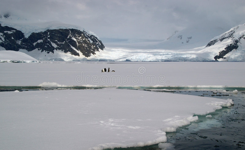 Download Antarctic sea ice stock image. Image of climate, berg - 7261793