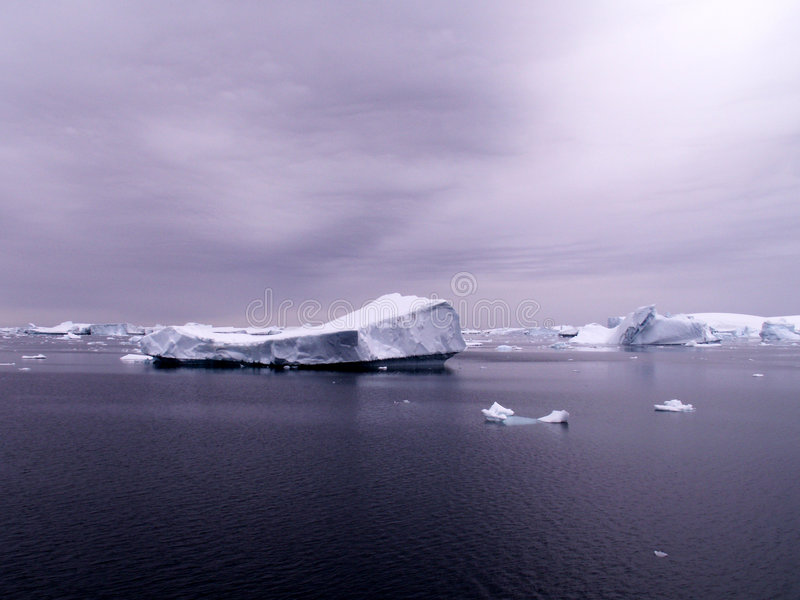 Antarctic sea with icebergs stock images