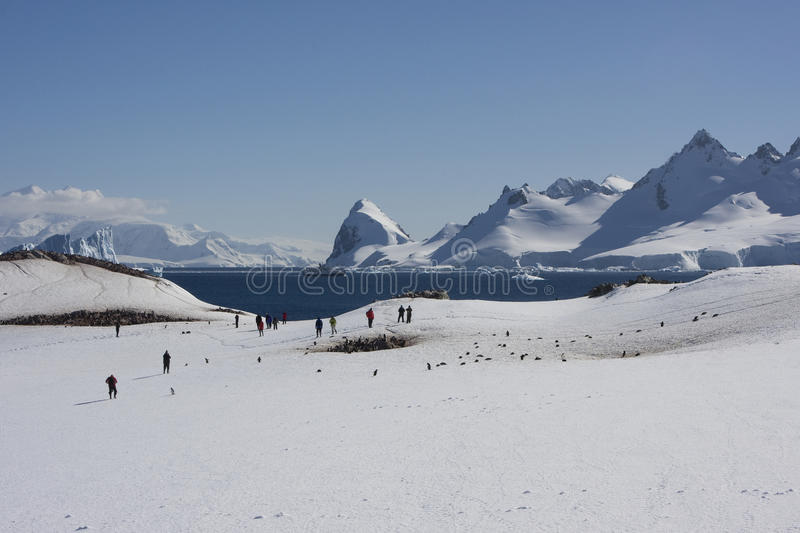 Download Antarctica, Cuverville Island Stock Photo - Image: 9745146