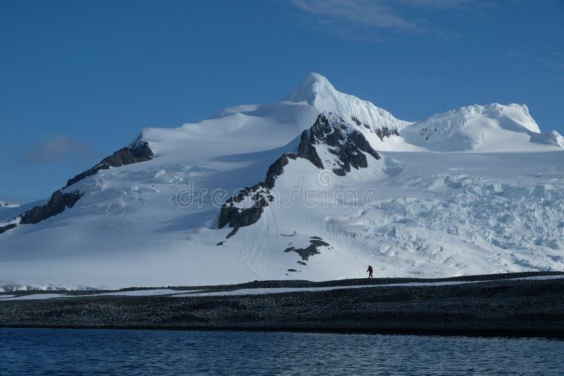 Antarctica die onder oorspronkelijke bergen, sneeuw en kruipende gletsjers wandelen royalty-vrije stock afbeeldingen