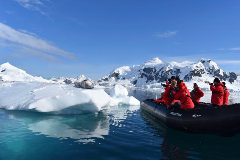 Antarctica, A lamparta foka na górze lodowej z turystami zdjęcie stock