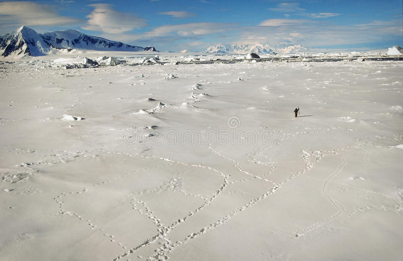 Antarctica, Landscape of Snow and Ice royalty free stock photo